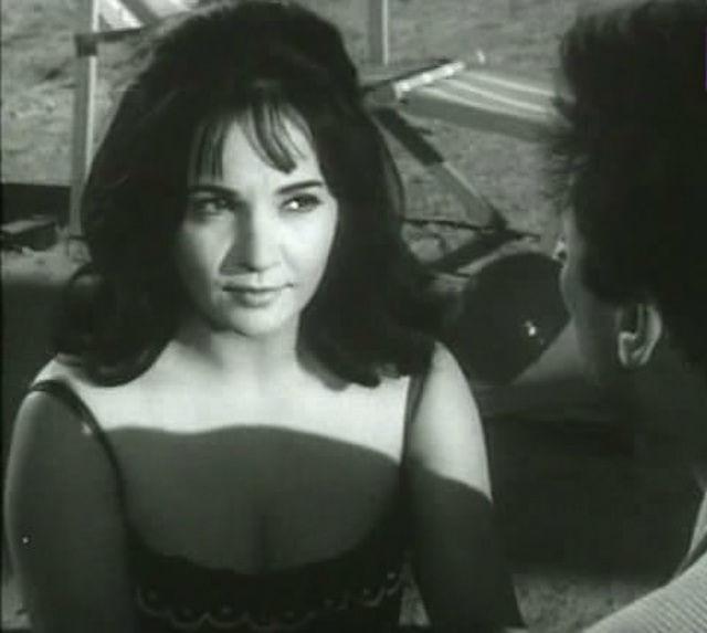 مشاهدة فيلم الزوجة 13 1962 DVD يوتيوب اون لاين